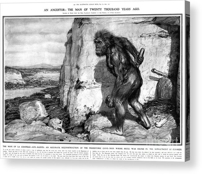 1909 Acrylic Print featuring the photograph Neanderthal Man by Granger