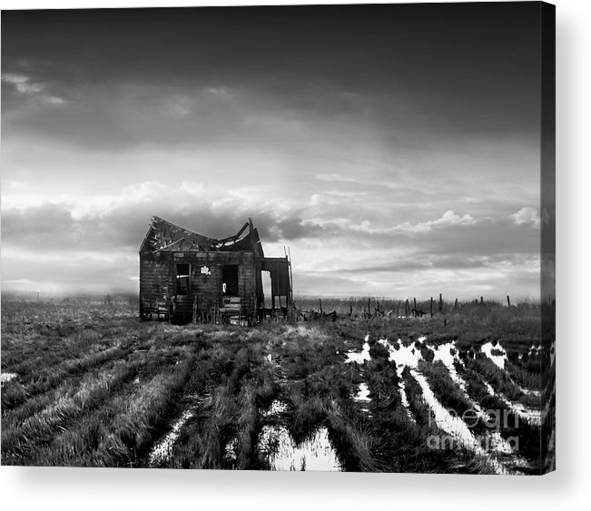 Architecture Acrylic Print featuring the photograph The Shack by Dana DiPasquale