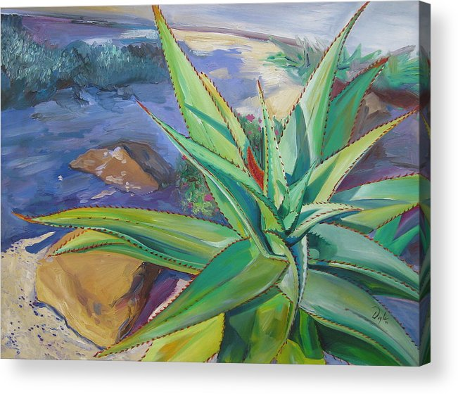 Plants Acrylic Print featuring the painting Aloe Vera Number Two by Karen Doyle