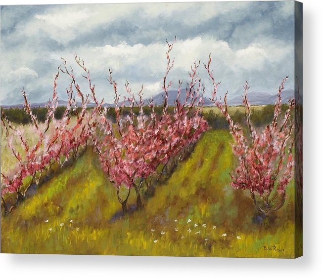 Apple Tree Acrylic Print featuring the painting Apple Hill Springtime by Brenda Williams