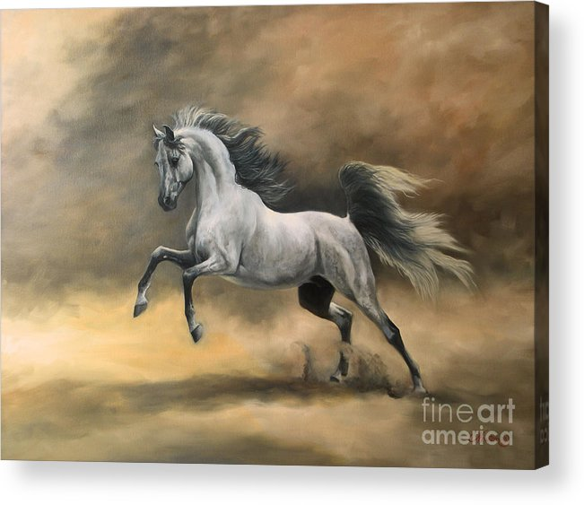 Horse Acrylic Print featuring the painting Arabian by Jeanne Newton Schoborg