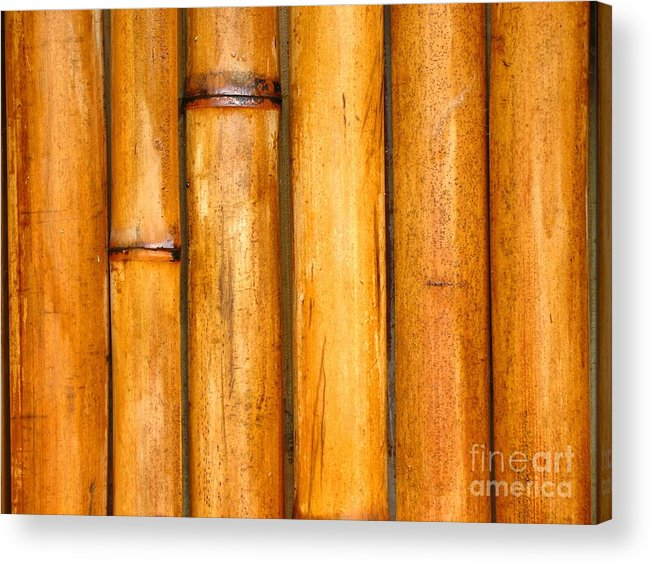 Background Acrylic Print featuring the photograph Bamboo Poles by Yali Shi