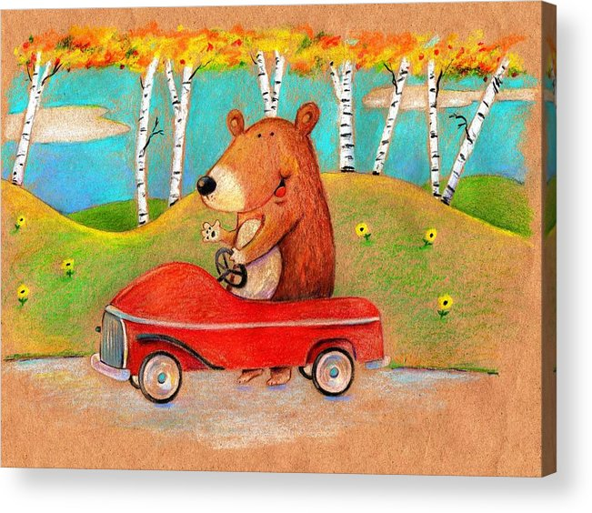 Bear Acrylic Print featuring the drawing Bear Out For A Drive by Scott Nelson