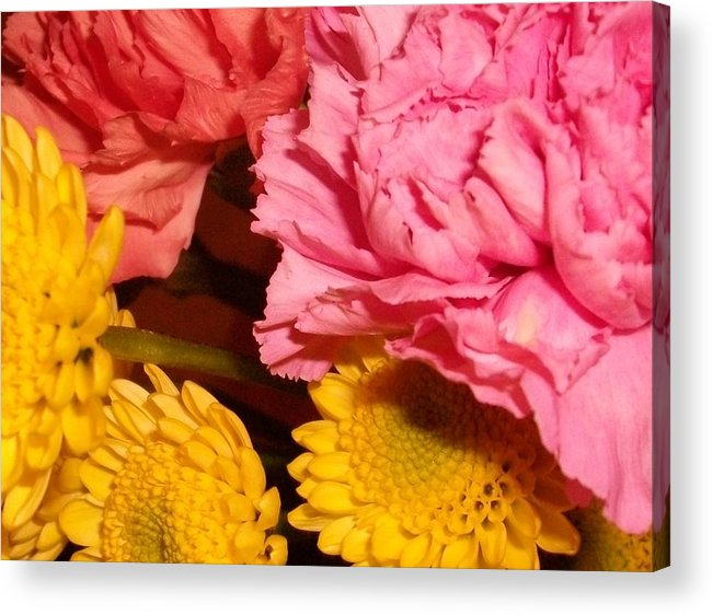 Colors Acrylic Print featuring the photograph Color Of Spring by LDPhotography Stephanie Armstrong