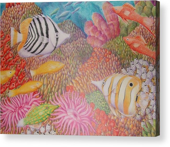 Seascape Fish Coral Drawing Acrylic Print featuring the drawing Colorful Ocean by Jubamo