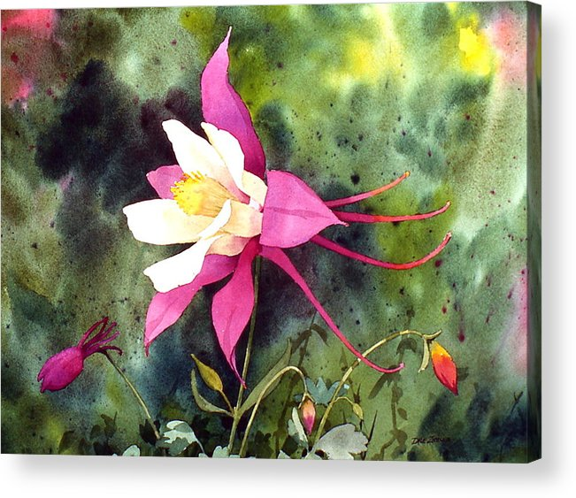 Flowers Acrylic Print featuring the painting Columbine by Faye Ziegler