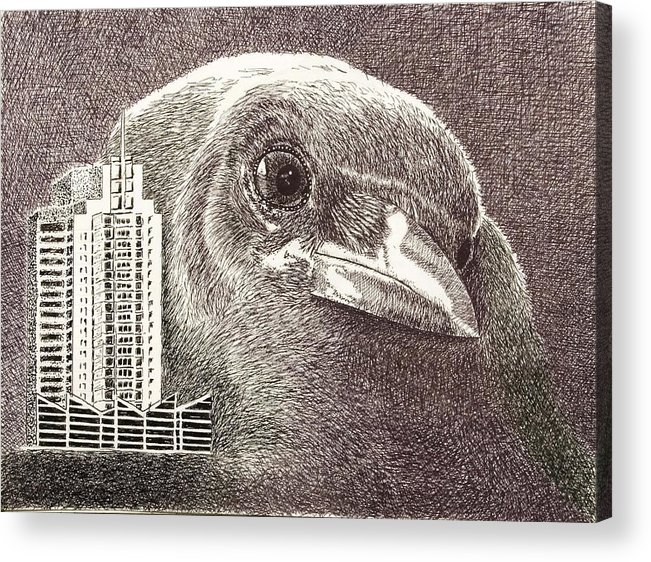 Pen Acrylic Print featuring the drawing Crow Over Casino Windsor by Wade Clark