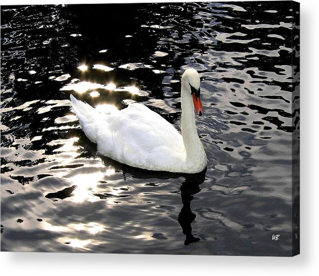 Sun Rays Acrylic Print featuring the photograph Electric Waters by Will Borden