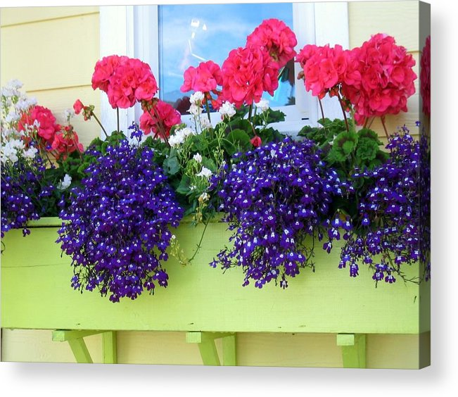 Flowers Acrylic Print featuring the photograph Flowers Everywhere by Bob Gardner