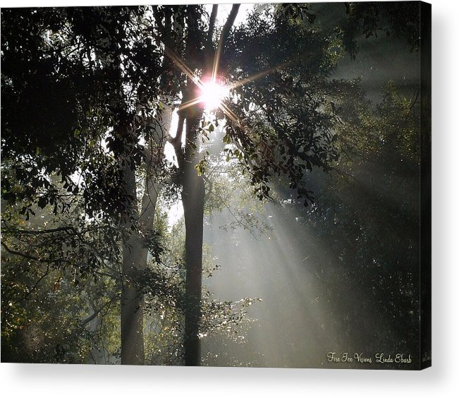 Morning Acrylic Print featuring the photograph Glorious Sunrise by Linda Ebarb