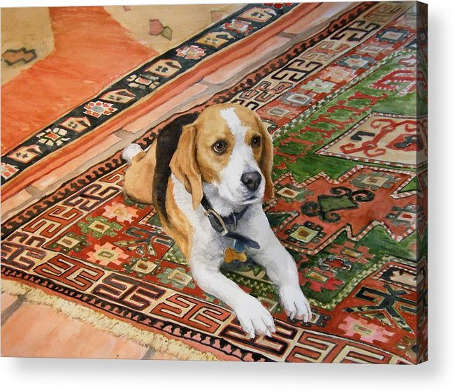 Akc Acrylic Print featuring the painting Harley by Debra Jones