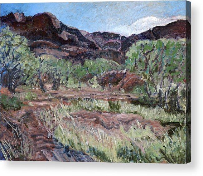 Australia Acrylic Print featuring the painting Kings Canyon II by Joan De Bot