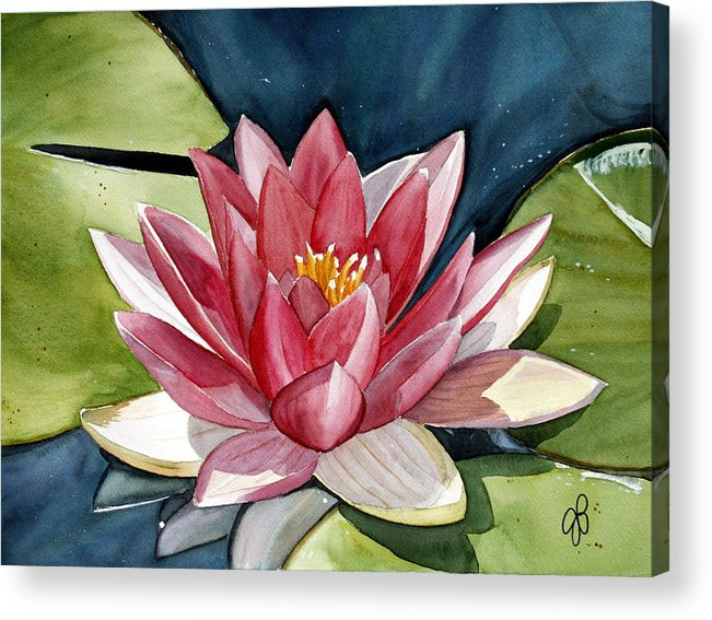 Water Lilly Flower Acrylic Print featuring the painting Lilly Pond by Julie Pflanzer