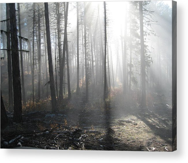 Acrylic Print featuring the photograph Morning Fog by JK Photography