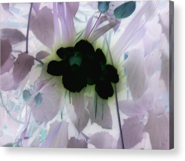 Negative Acrylic Print featuring the photograph Negative by Robert Cunningham
