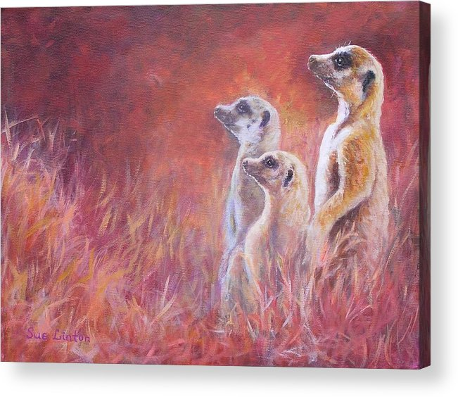 Meerkats Acrylic Print featuring the painting On Alert by Sue Linton