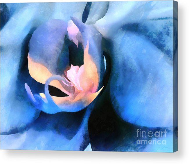 Orchid Acrylic Print featuring the photograph Orchid Lullaby by Krissy Katsimbras