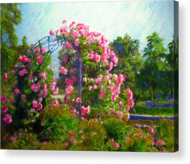 Rose Acrylic Print featuring the painting Rose Trellis by Michael Durst