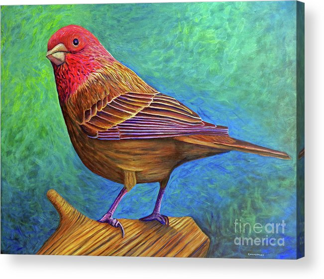 Bird Acrylic Print featuring the painting Sacred Space by Brian Commerford