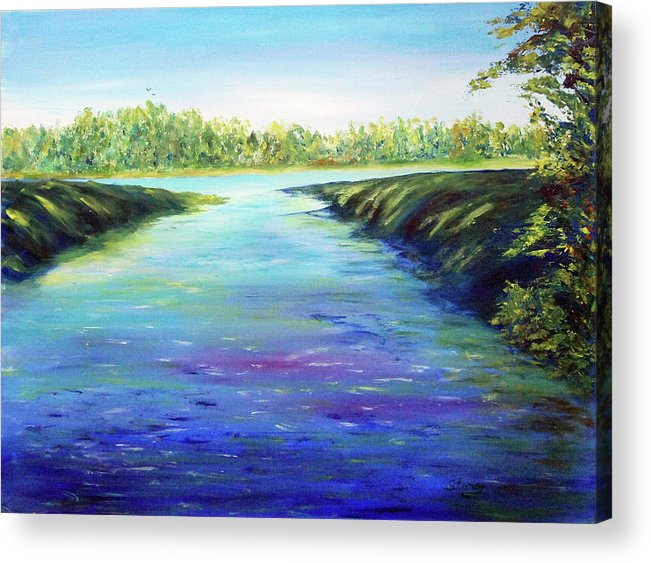Water Acrylic Print featuring the painting Shingle Creek by Tina Storey