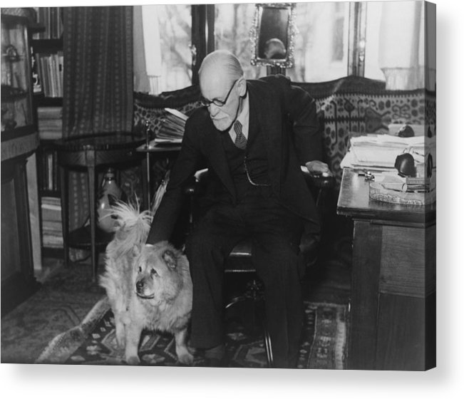 History Acrylic Print featuring the photograph Sigmund Freud 1856-1939, Seated by Everett