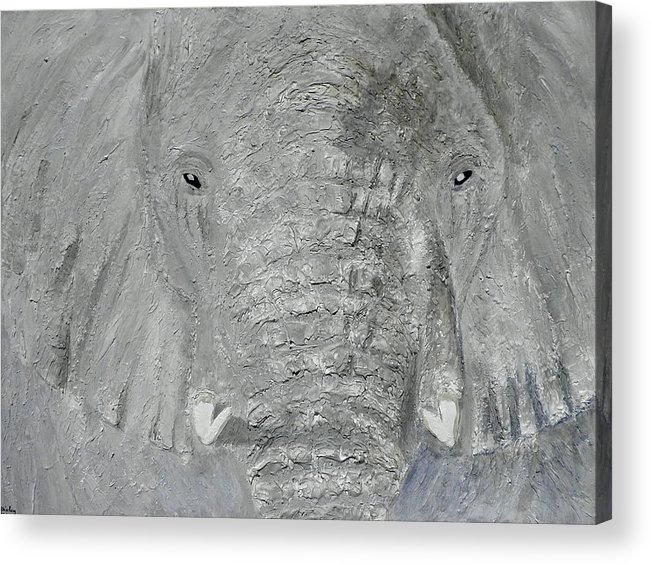 Elephant; Young Elephant; Grey Elephant; Elephant Close Up; Elephant Head; Tusks; Animals; Endangered Animals;african Animals Acrylic Print featuring the painting Small Tusks by Shirley Wilberforce