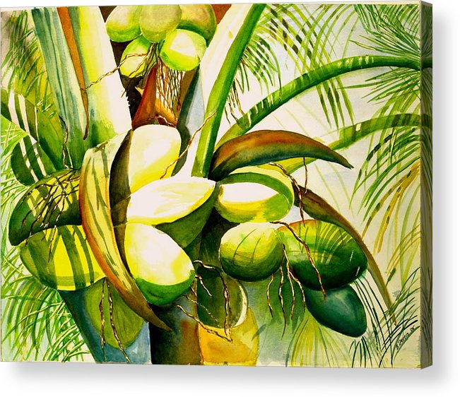 Trees Acrylic Print featuring the painting Sunlit Coconuts by Elizabeth Ferris