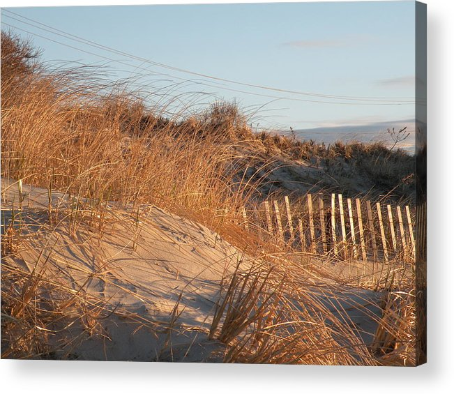 Sunrise Acrylic Print featuring the photograph Sunrise On The Dunes by Donald Cameron