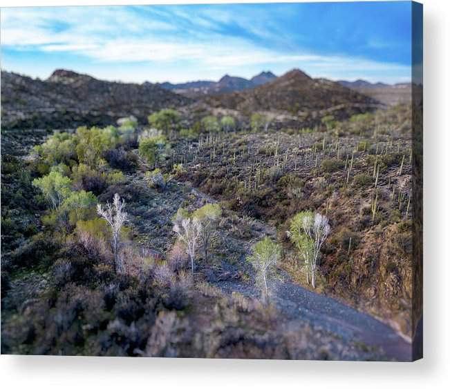 Drone Photography Acrylic Print featuring the photograph Tilt-shift Desert Wash by David Stevens