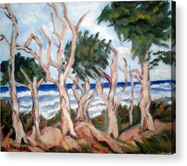 Ocean Acrylic Print featuring the painting Wild Coast by Lia Marsman