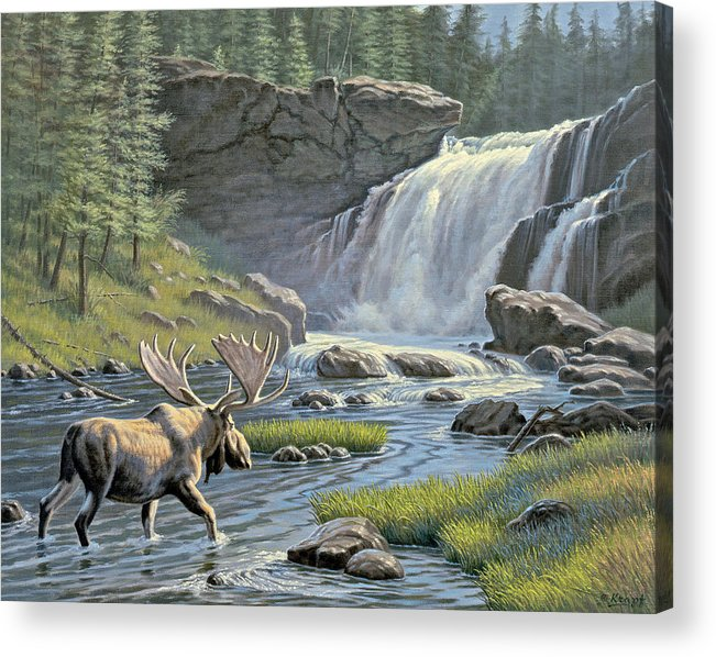Wildlife Acrylic Print featuring the painting Moose Falls by Paul Krapf