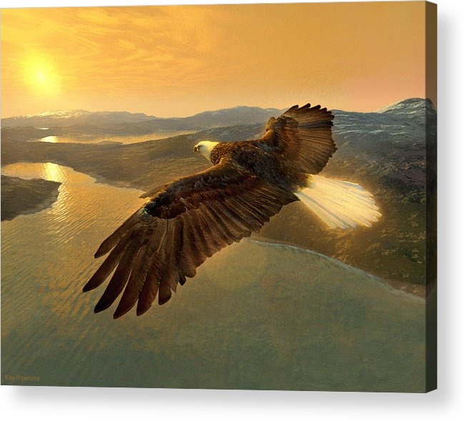 Eagle Acrylic Print featuring the digital art Soaring Eagle by Ray Downing