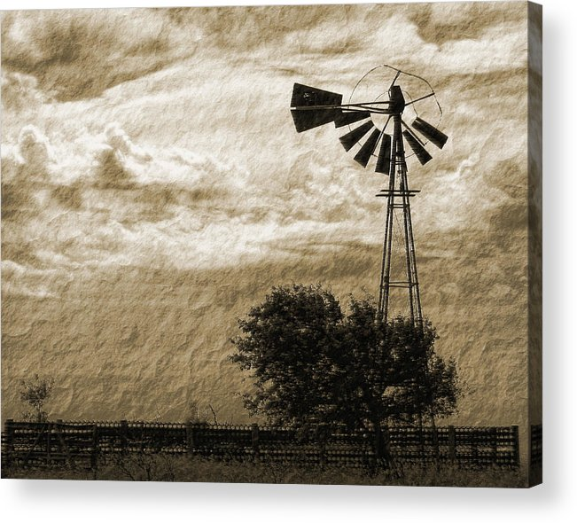 Sepia Acrylic Print featuring the photograph Wind Blown by Tony Grider