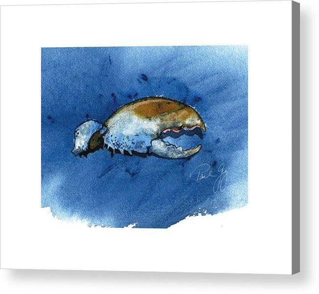 Lobster Claw Acrylic Print featuring the painting Lobster Claw by Paul Gaj