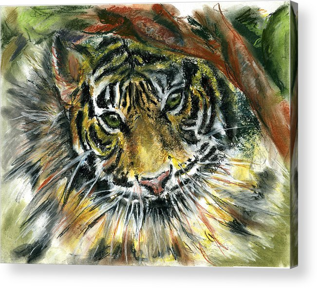 Tiger Acrylic Print featuring the painting Tiger by Marilyn Barton