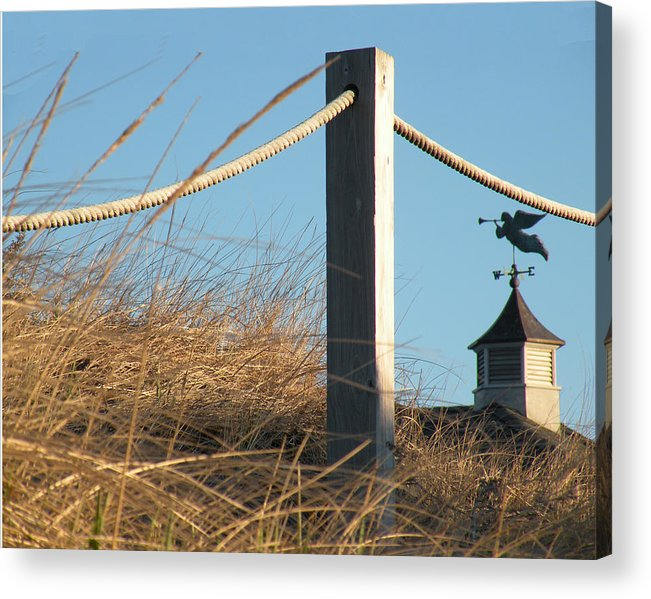 Weathervane Acrylic Print featuring the photograph Weathervane by Donald Cameron
