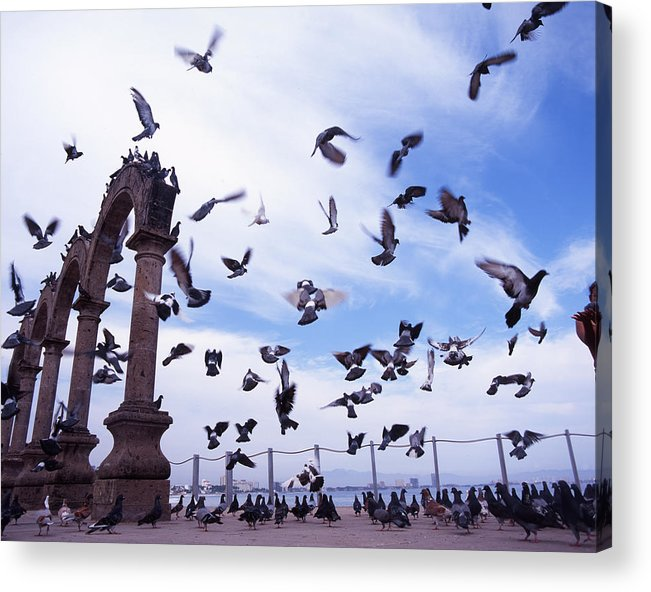 Photography Acrylic Print featuring the photograph Mexican Pigeon Ruins by Benjamin Garvey
