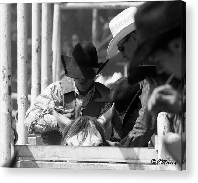 Rodeo Acrylic Print featuring the photograph Easing In by Carol Miller