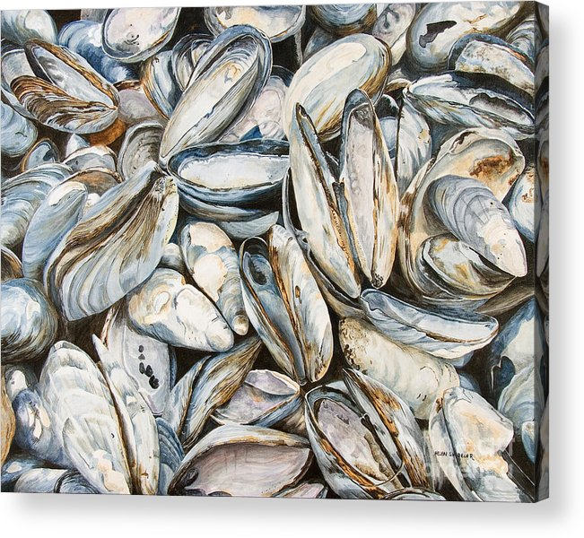 Sea Shells Acrylic Print featuring the painting Fundy Blues by Helen Shideler