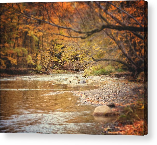 Stream Landscape Acrylic Print featuring the photograph Walnut Creek In Autumn by Lisa Russo