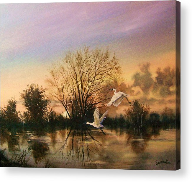 Landscape Acrylic Print featuring the painting Early Flight by Tom Shropshire