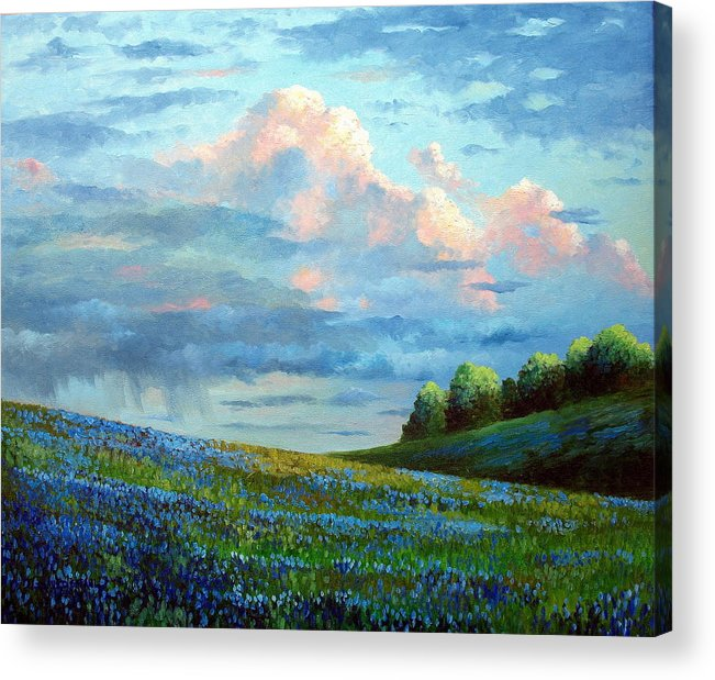 Landscape Acrylic Print featuring the painting Evening Rain by David G Paul