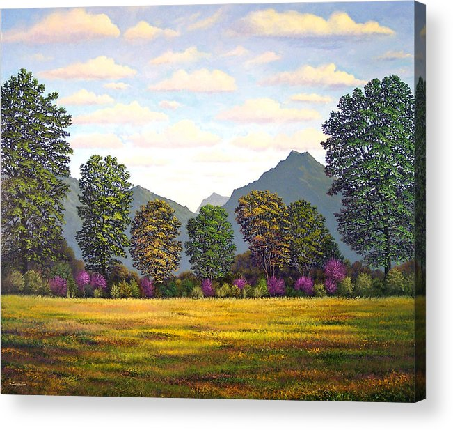 Mountains Acrylic Print featuring the painting Sutter Buttes In Springtime by Frank Wilson