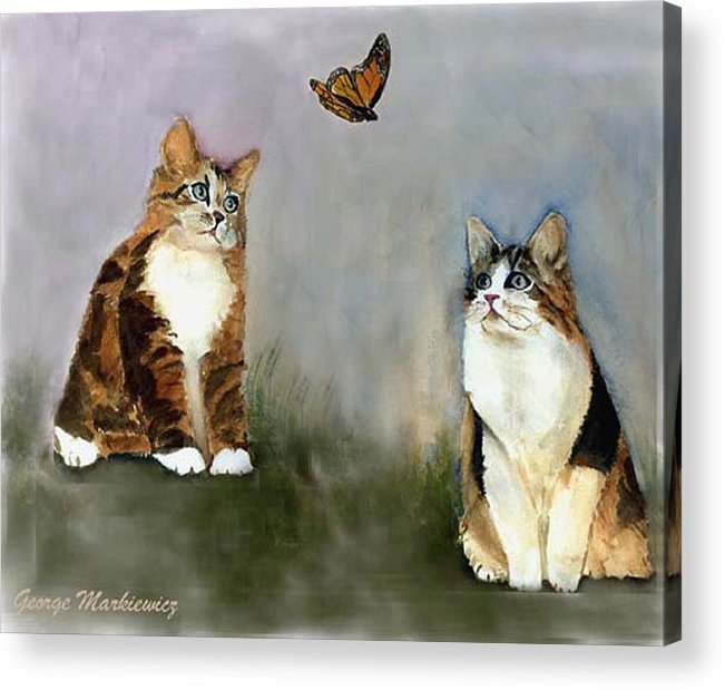 Cats Butterfly Acrylic Print featuring the print Whatzit by George Markiewicz