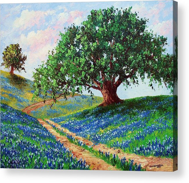 Bluebonnet Acrylic Print featuring the painting Bluebonnet Road by David G Paul
