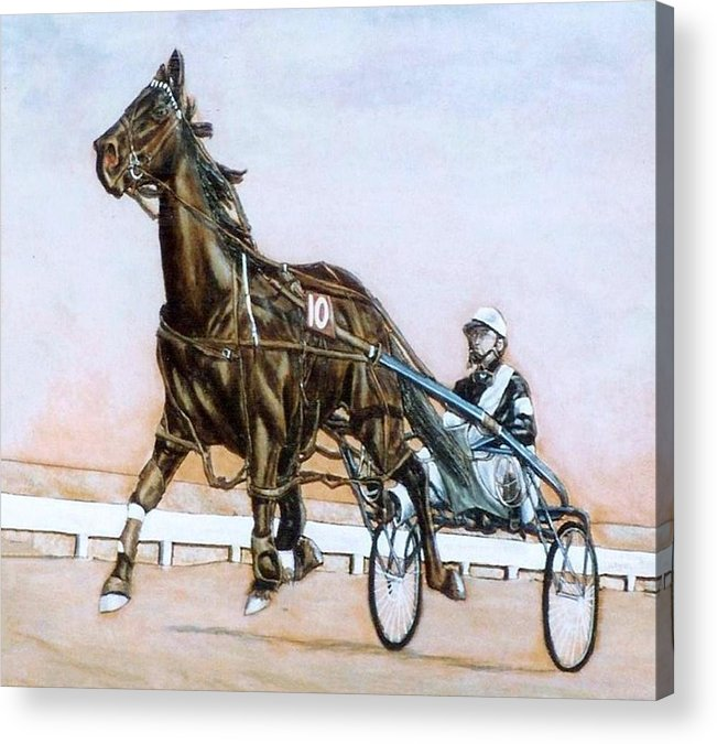 Horses Acrylic Print featuring the painting The Pacer by Lilly King