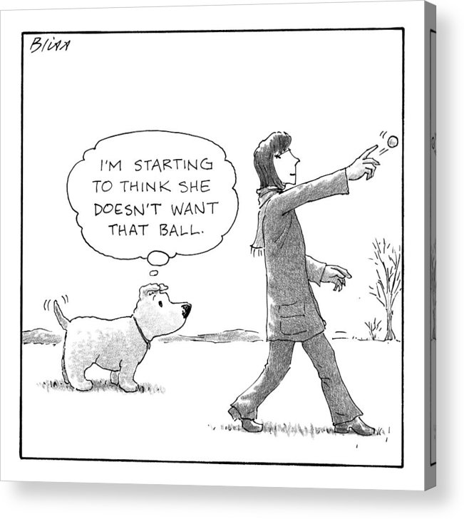 A Dog Thinks To Himself As A Woman Throws A Ball by Harry Bliss