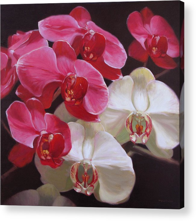 Floral Acrylic Print featuring the painting Pink And White Orchids by Takayuki Harada