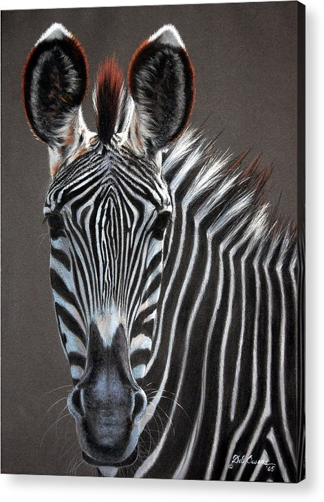 Wildlife Acrylic Print featuring the painting African Beauty by Deb Owens-Lowe