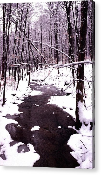Winter Acrylic Print featuring the photograph 10802-1 by Mike Davis